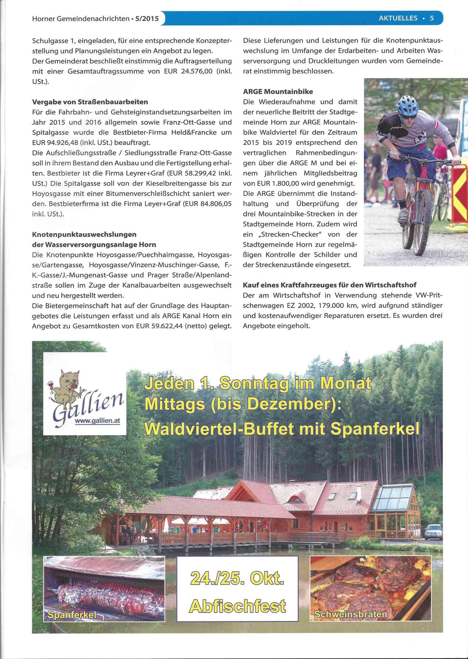 2015-07_Horner Gemeindenachrichten_5-1